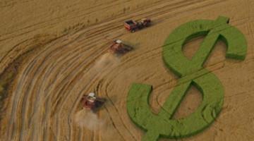 emplacamento de máquinas agrícolas