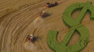 7 mitos sobre planejamento tributario e sucessorio na atividade rural