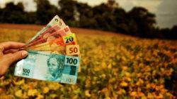 Pessoa física ou pessoa jurídica: como pagar menos impostos na atividade rural?